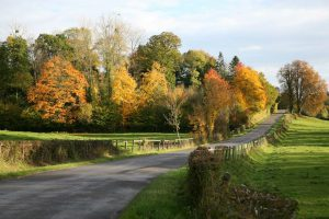 paysage d'automne du pays de cambremer
